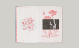 Foolscap-Editions-Elliot-Fox-Idol Hands-RED-4
